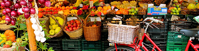 Campo de' Fiori Accessible tours